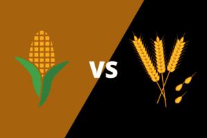 Bourbon vs Rye